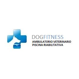 VISITA SPECIALISTICA VETERINARIA + 5 SEDUTE DI PERCORSO DI IDROTERAPIA RIABILITATIVA PER Cane taglia media